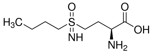 L-Buthionine-sulfoximine(BSO)